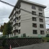 上野芝A団地1号棟 5階
