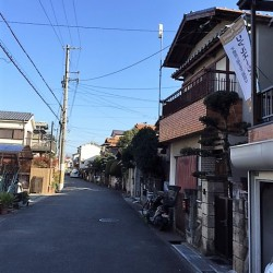 前面道路6m / ( その他 )