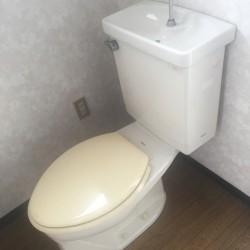 トイレ / ( その他 )