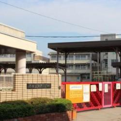 浜寺小学校 / ( 周辺 )