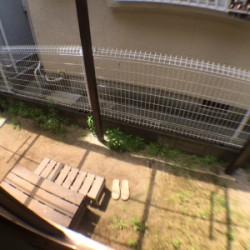 日当たりのいいお庭でガーデニング / ( その他 )