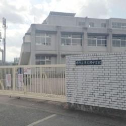 津久野中学校 / ( 周辺 )